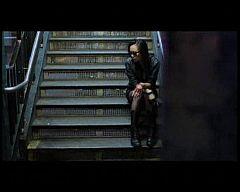 Disco del año 2009 - Pereza - Violento amor