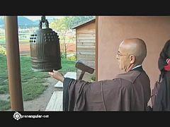 """granangular.cat - Avanç: """"Zen, aquí i ara"""""""