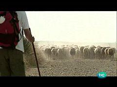 Nuestros caminos a Santiago - Camino de la lana