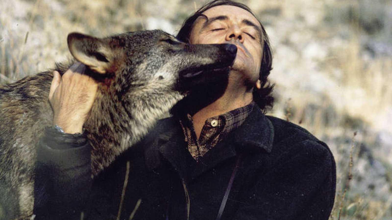 Muere Félix Rodríguez de la Fuente (1980)