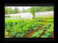 Terra Verda - Productes Eco