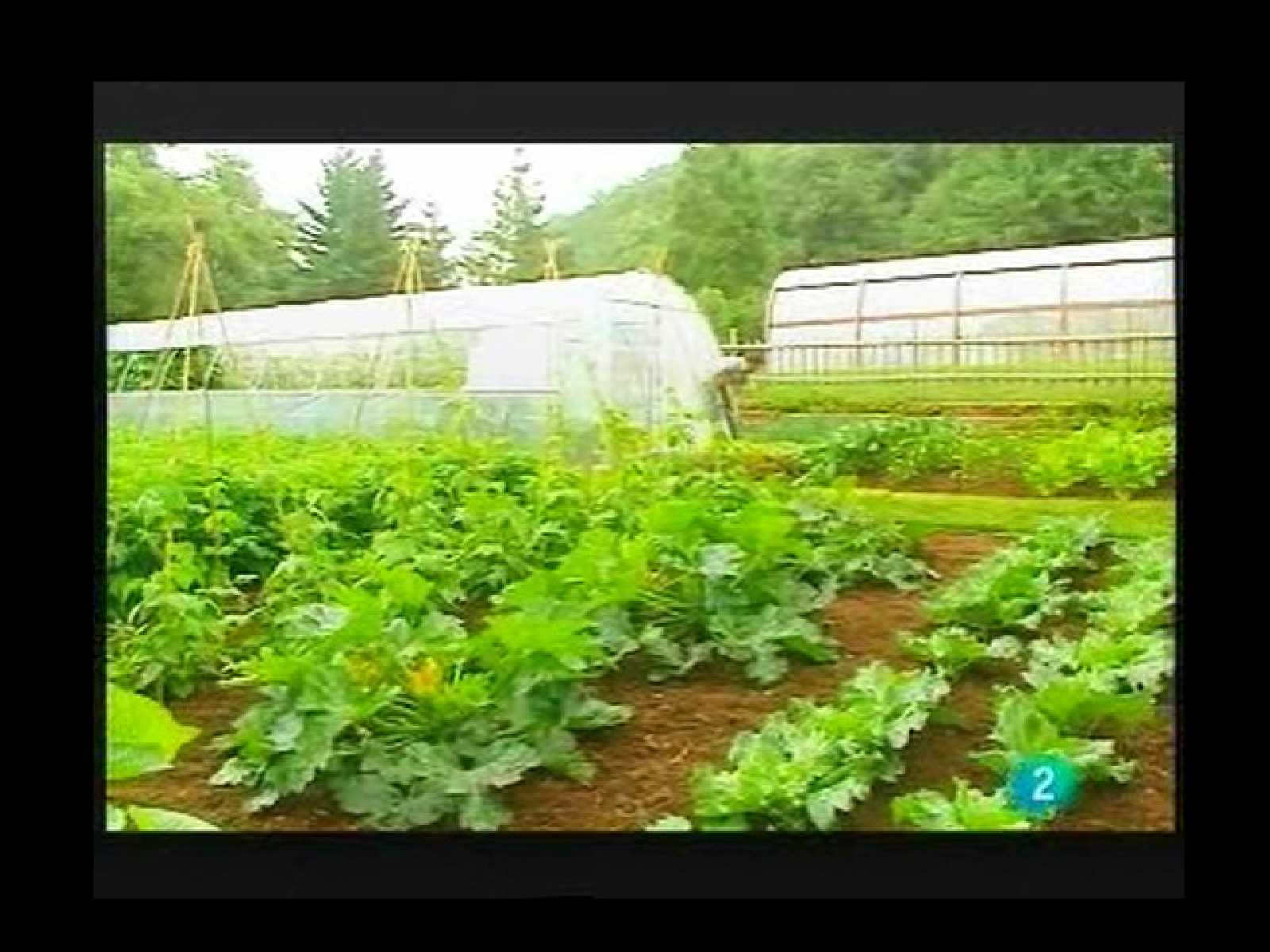Terra Verda: Productes Eco ( 24/04/2010)