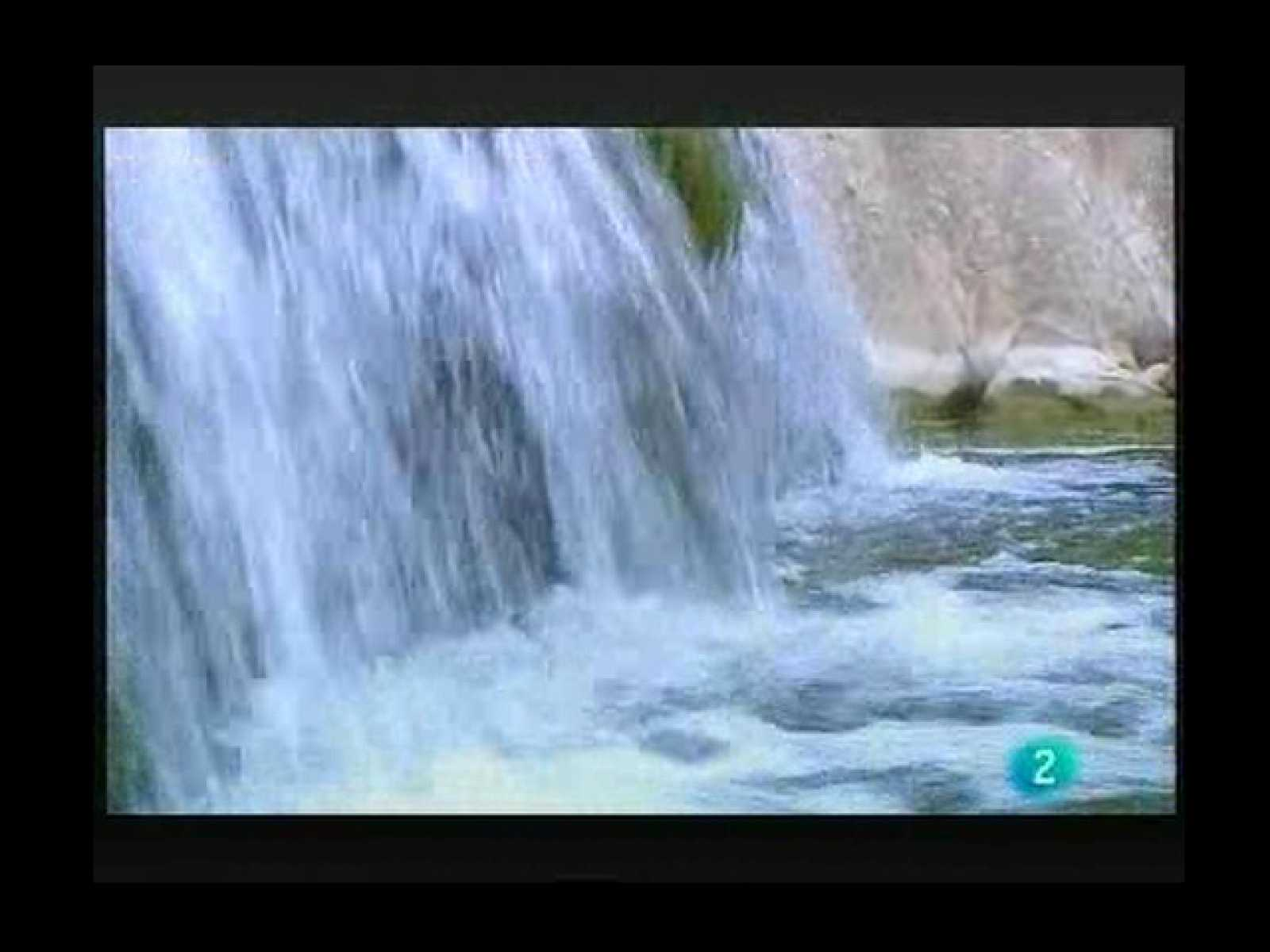 Terra Verda: Estalvi en l'abundor ( 22 maig 2010)