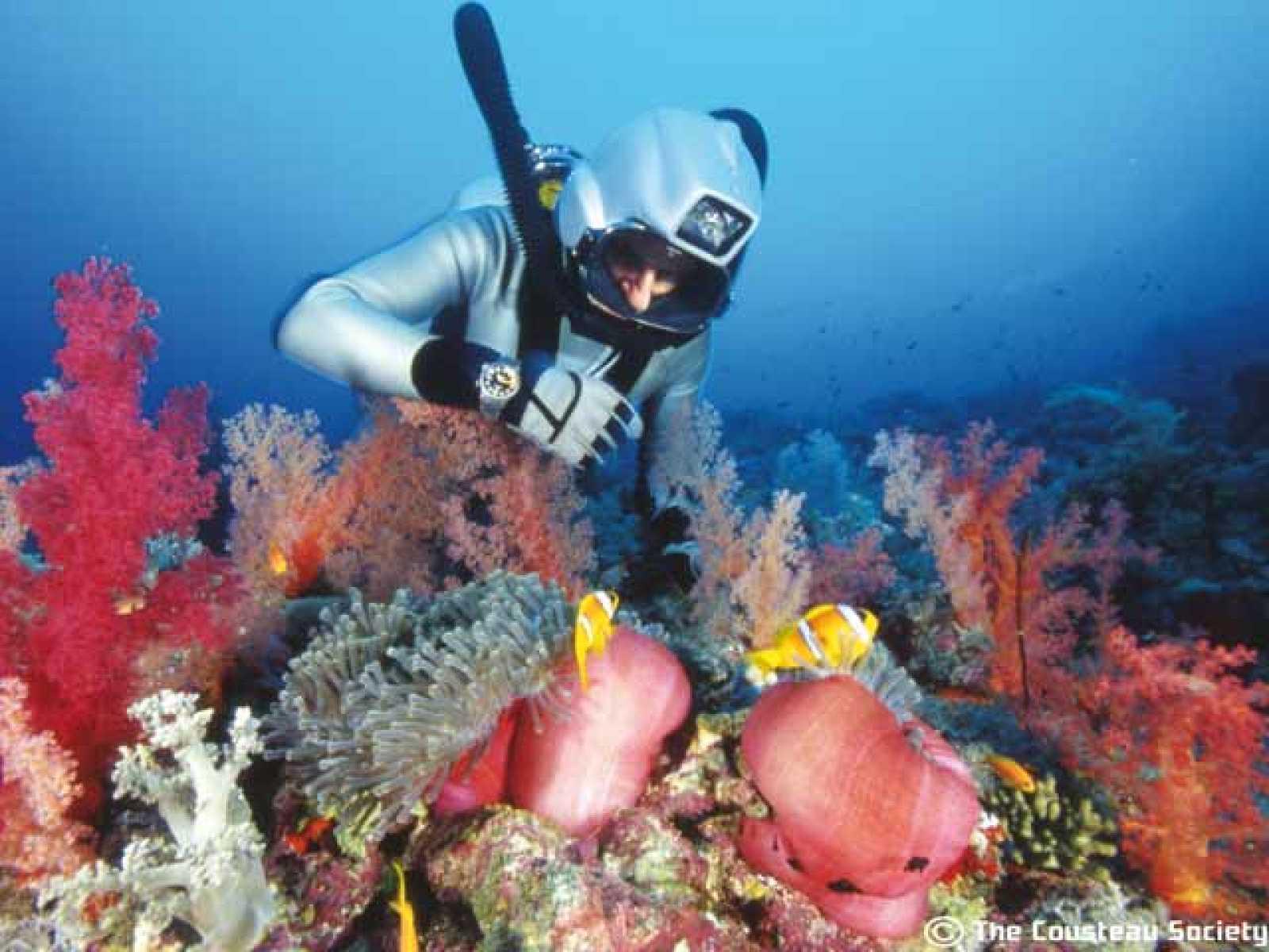 Viajes submarinos del capitán Cousteau