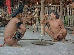 El hombre y la tierra - El yopo, la droga de los Yanomamos
