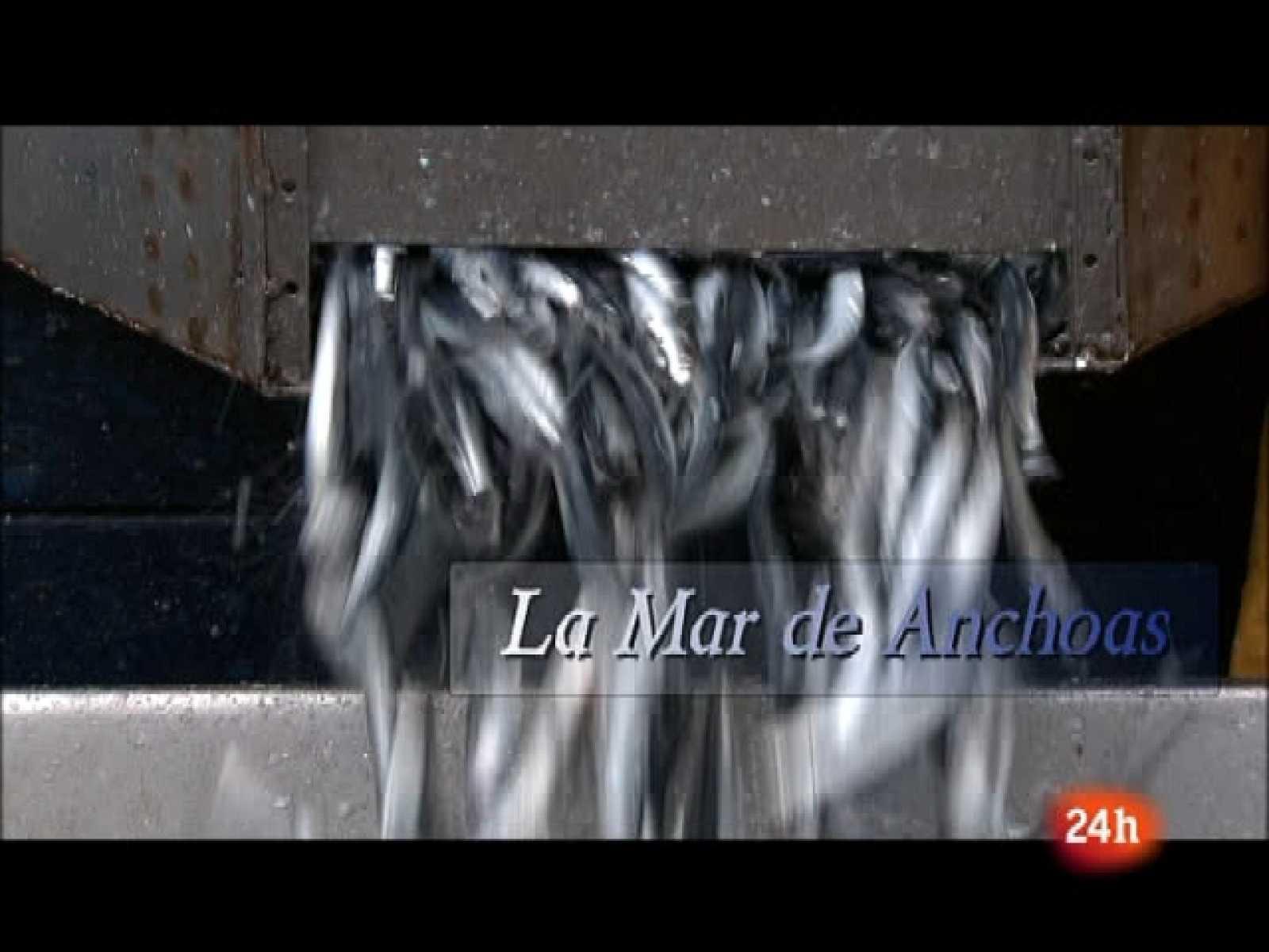 Crónicas: La mar de anchoas (10/10/10)