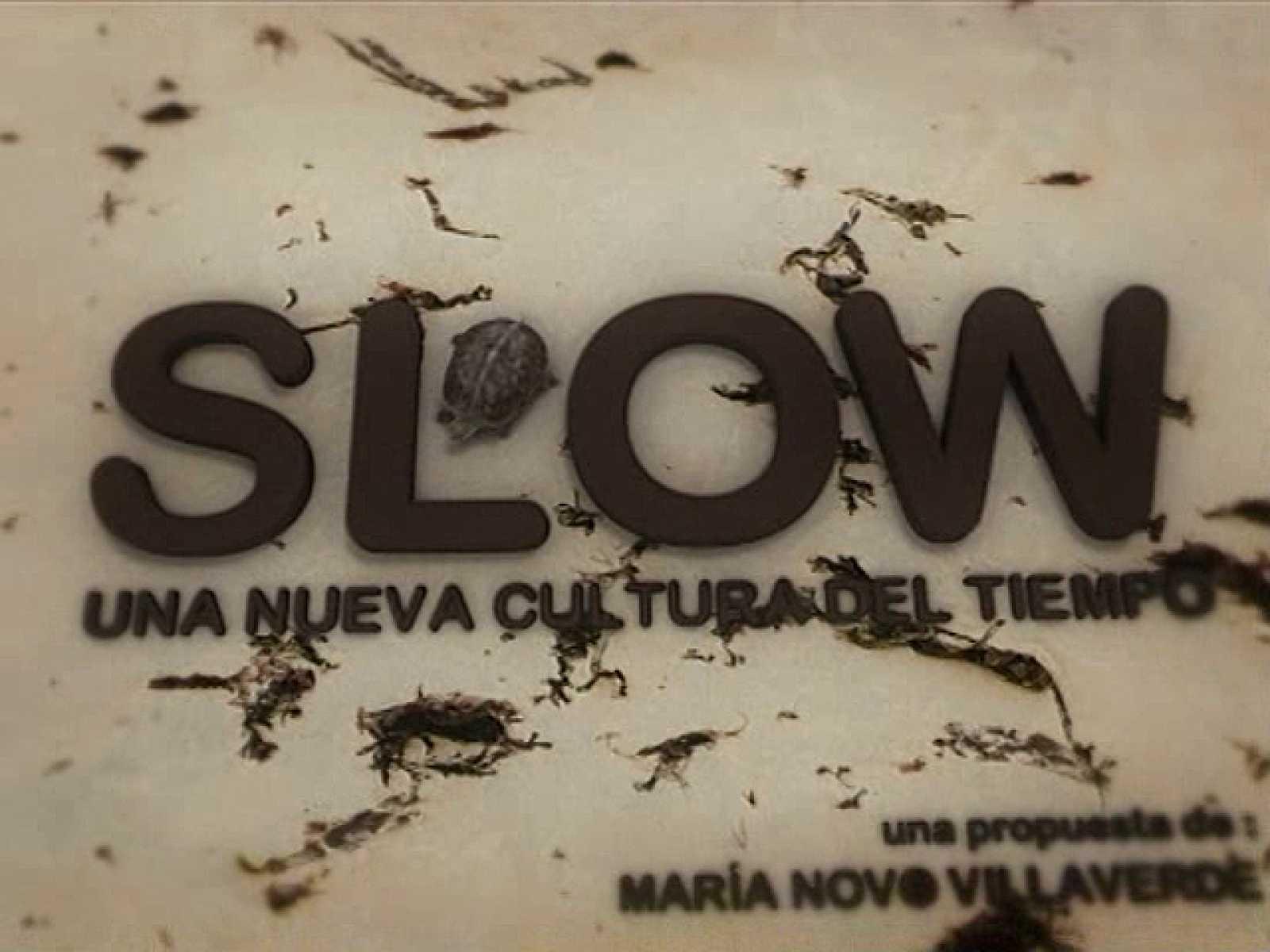 SLOW: Una nueva Cultura del Tiempo (05/11/2010) UNED
