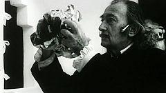 Archivo Antologia - Dalí, una ilusión óptica