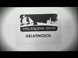 Gelatinosos en el Hespérides